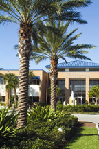 Bradenton campus building with palm trees