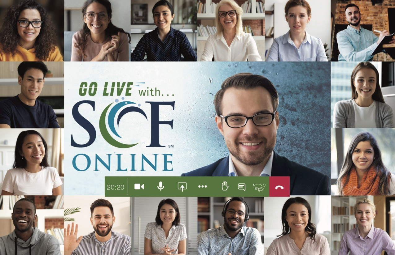 Go Live with SCF Online learning environment image